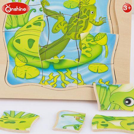puzzle din lemn multistrat viata broscutei 2