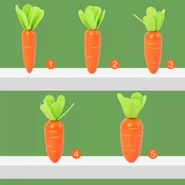 joc secventa marimilor cei 5 morcovi din gradina 6