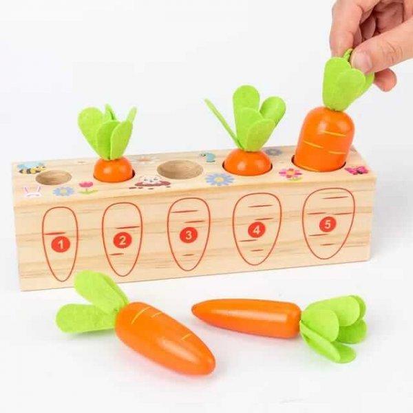 joc secventa marimilor cei 5 morcovi din gradina