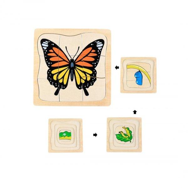 puzzle incastru circuitul de viata 7